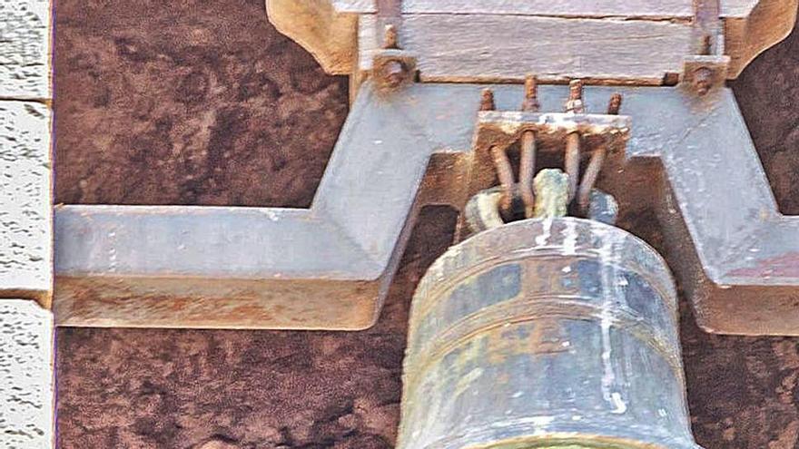 Capten la presència d'una parella d'òlibes a l'interior del campanar de Moià