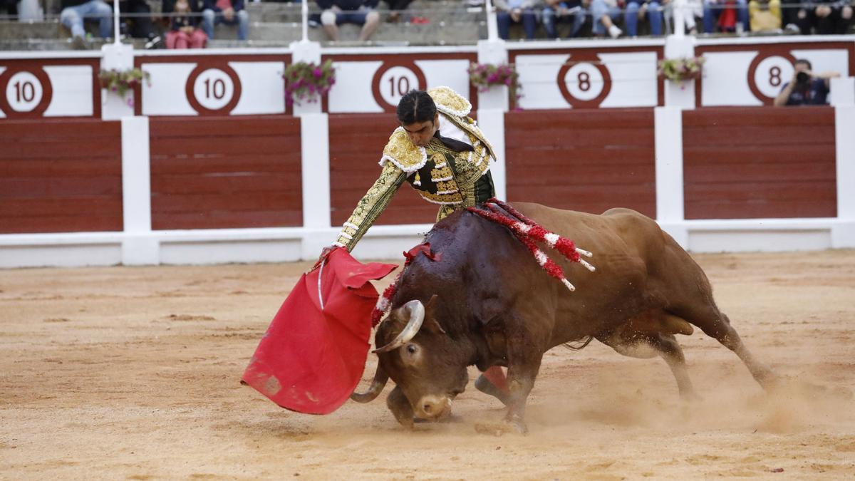 Miguel Ángel Perera, durante una faena en la plaza de toros de El Bibio.