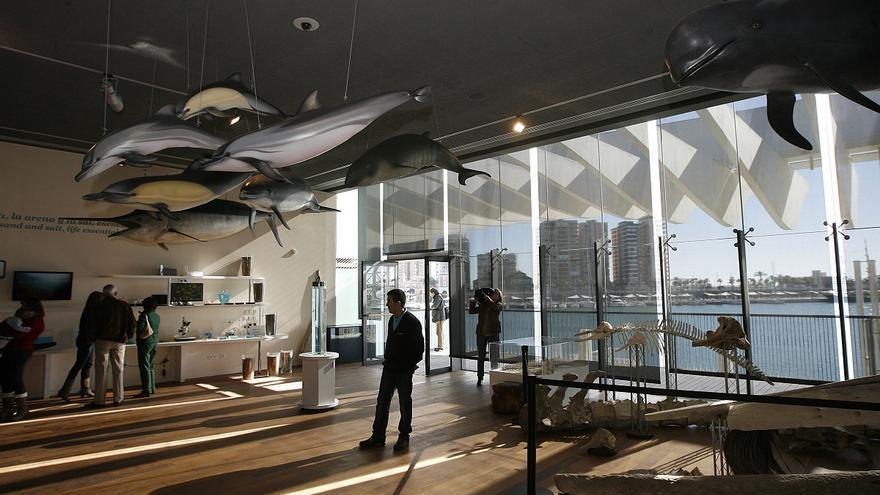 El Ayuntamiento de Málaga destina 110.000 euros para ayudar a la supervivencia del Aula del Mar