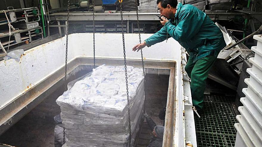 Los productores de pesca de Marín crean una bolsa de empleo para cubrir la necesidad de profesionales