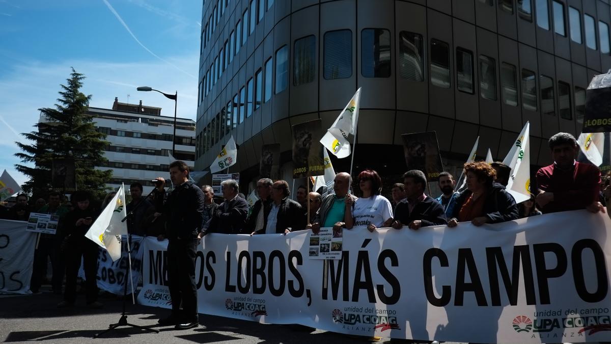 Manifestación contra los ataques de lobo en Zamora