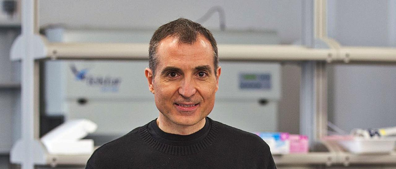 El biólogo sajeño Fernando Maestre dirige un equipo de investigación en la Universidad de Alicante.   ALEX DOMÍNGUEZ