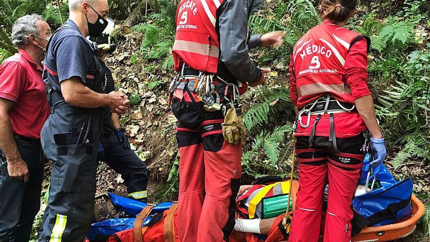 Herido un gijonés de 80 años tras caer cuando cogía leña en un monte colungués