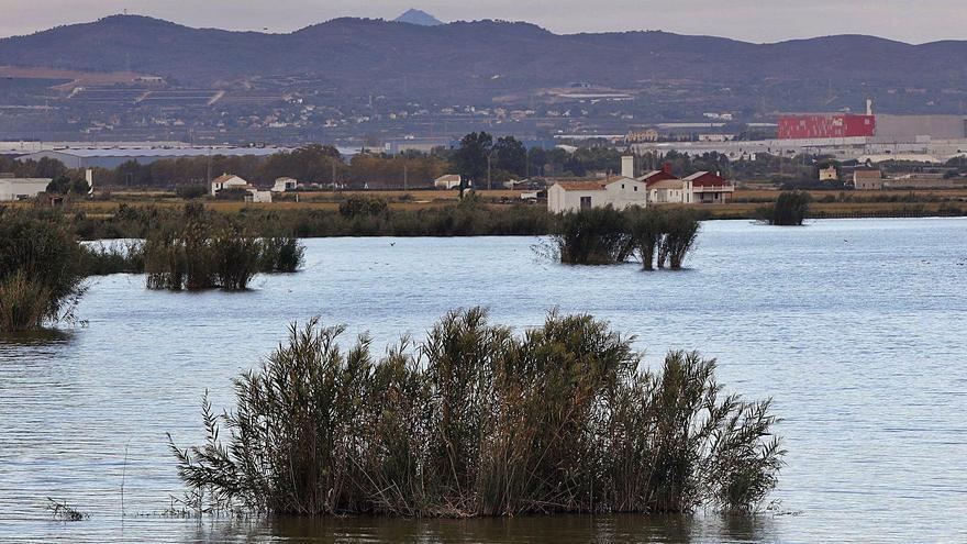 El Consell atribuye a las aguas contaminadas de Madrid el recorte del trasvase Tajo-Segura