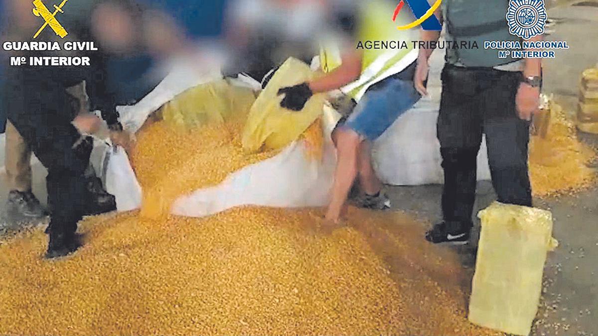 Imagen de los policías sacando la droga entre la carga de millo, en el Puerto de Las Palmas.