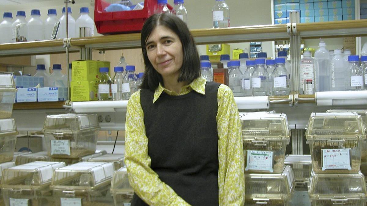 La directora del CNIO, María Blasco, ha liderado el estudio.