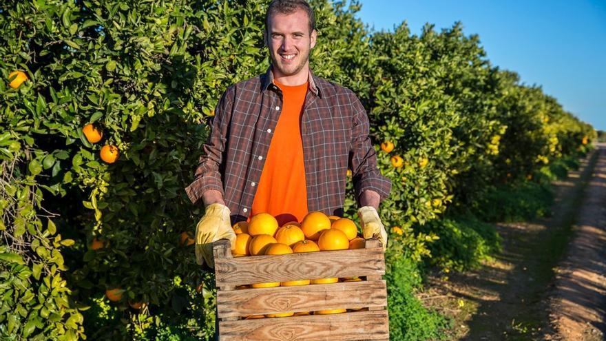 Sipcam o cómo cuidar los cultivos de uva y cítricos valencianos