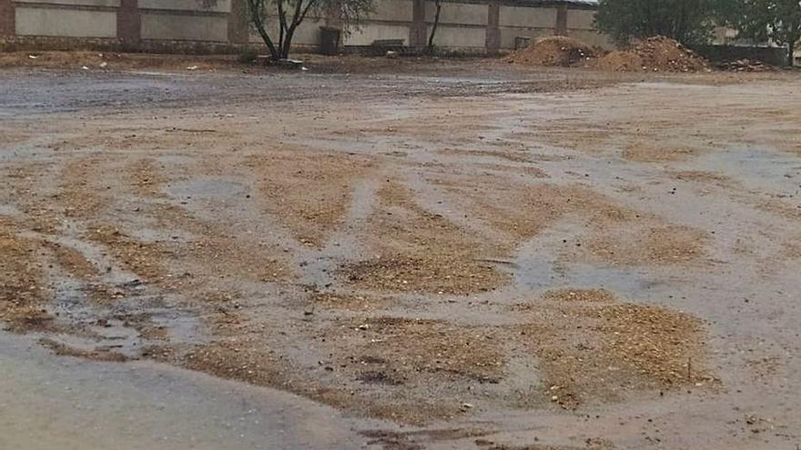 Toro retira 200 toneladas de escombros y residuos del cementerio