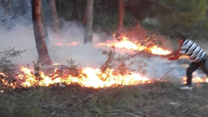Consiguen sofocar un incendio forestal en Moratalla