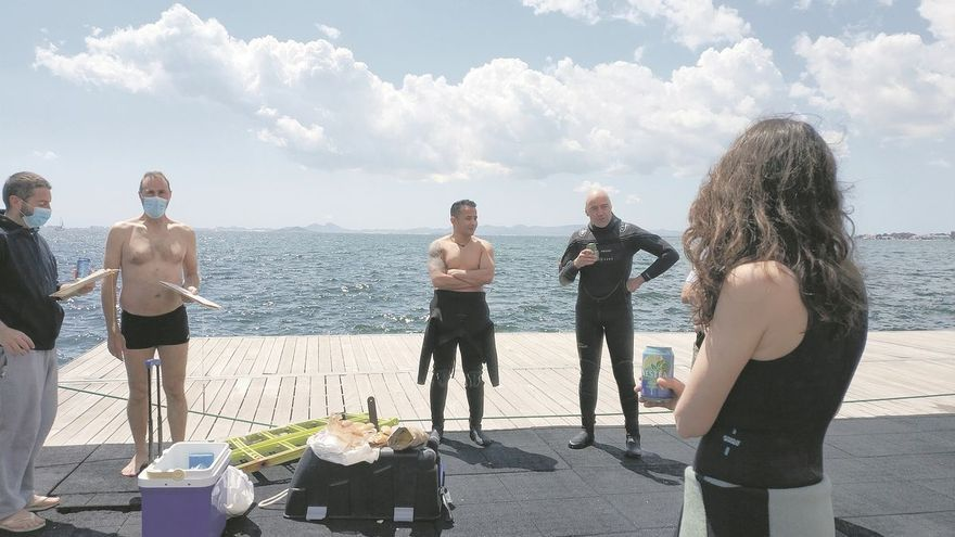 En busca de caballitos de mar con una app de móvil