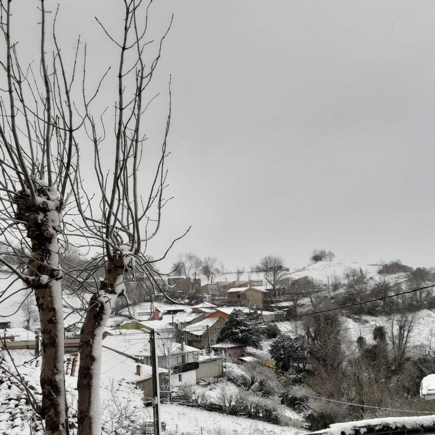 Linares, Proaza