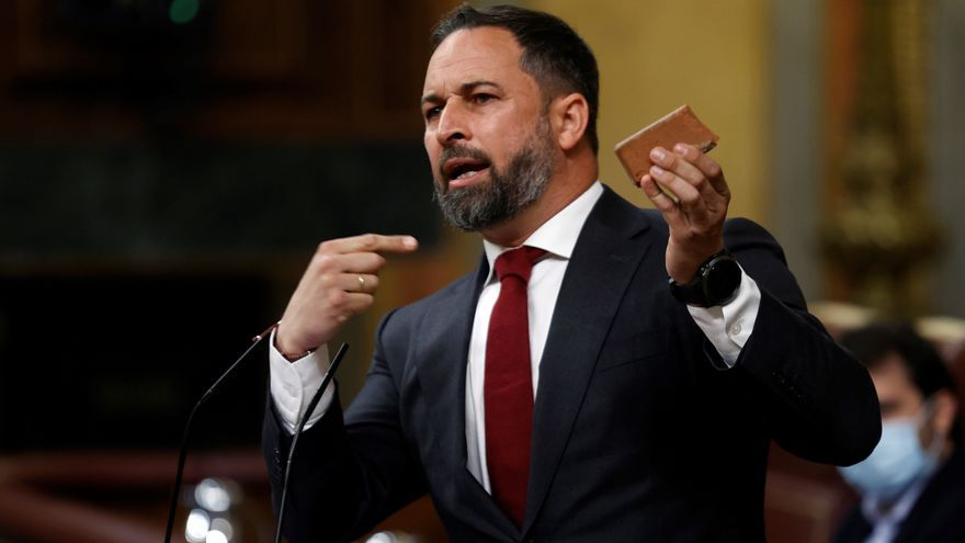Abascal saca un adoquín en el Congreso y culpa a Marlaska y UP de estar detrás de los ataques a Vox