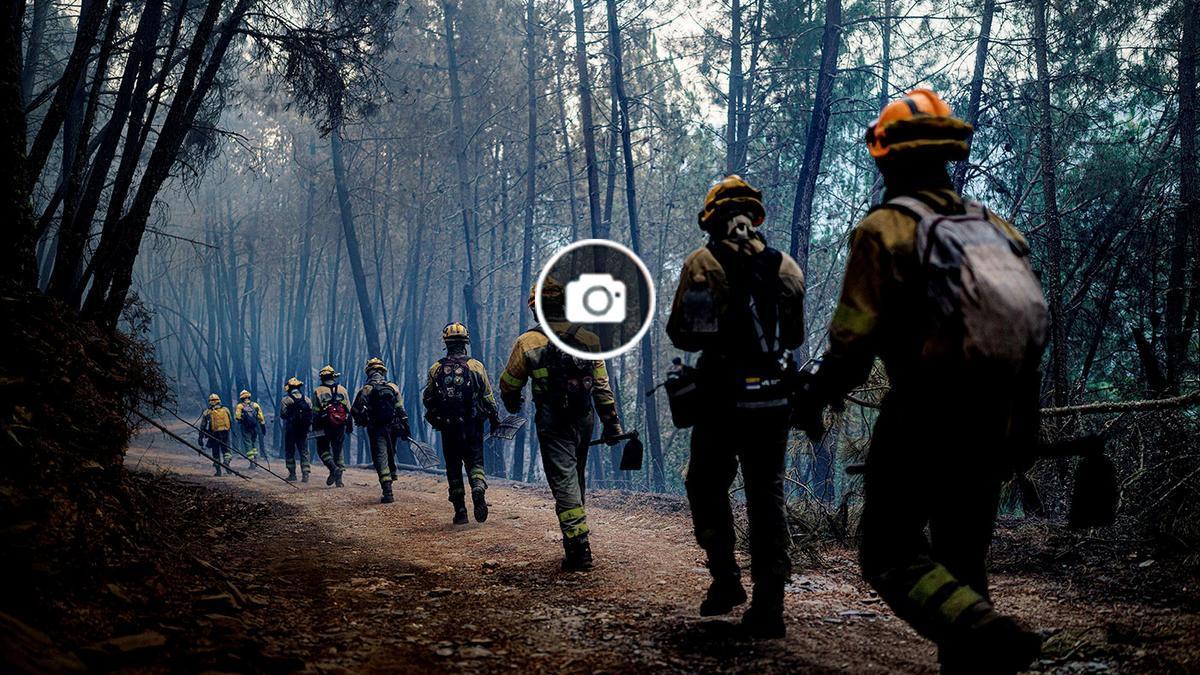 Brigadistas caminan en un monte arrasado en Pobra do Brollón