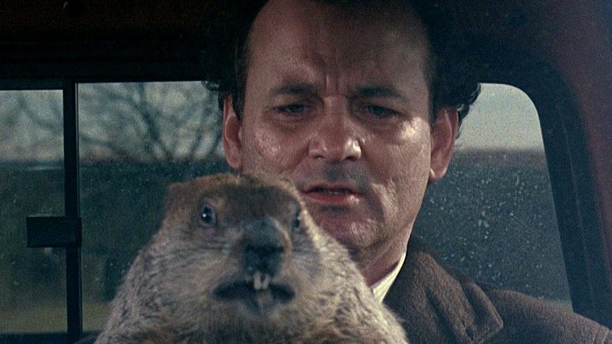 El año de la marmota
