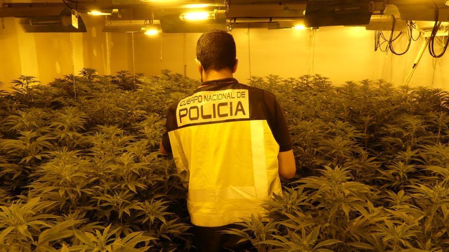 Operación contra el tráfico de drogas en San José Obrero