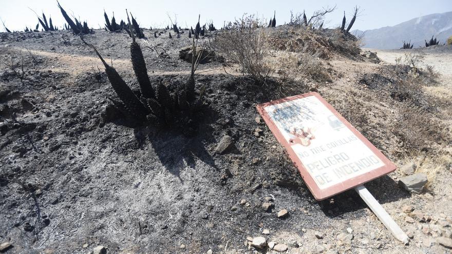 """El alcalde de Genalguacil explota: """"La catástrofe era evitable. Esto se ha convertido en una historia política"""""""