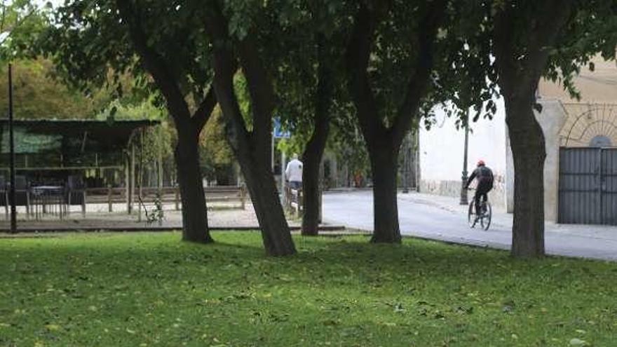 Aspecto de un jardín en la zona de Olivares.