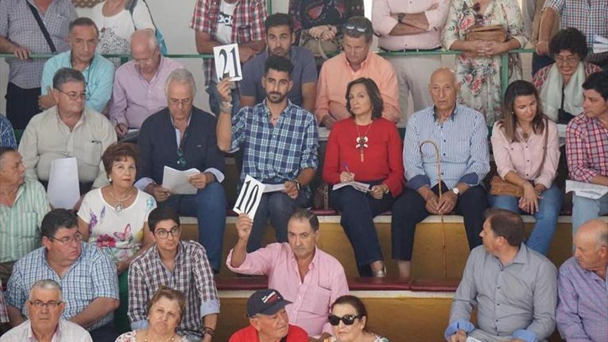 El remate de las subastas de ovino llega a los 71.590 euros