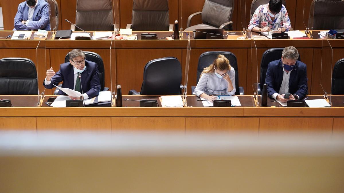 El consejero de Industria, Arturo Aliaga, ha intervenido en la sesión plenaria.