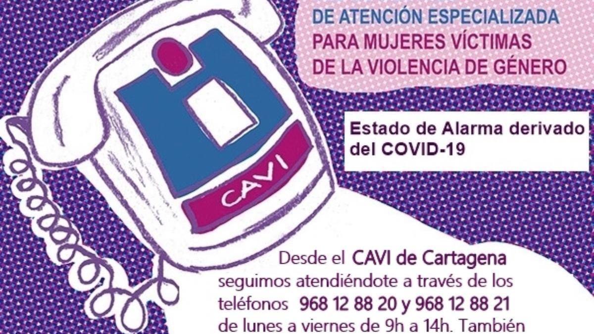 Cartel anunciador del CAVI