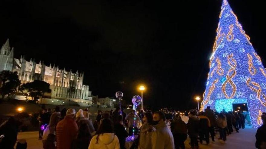 Palma zäunt Riesenbaum ein und sagt Grillfest zu Sant Sebastià ab