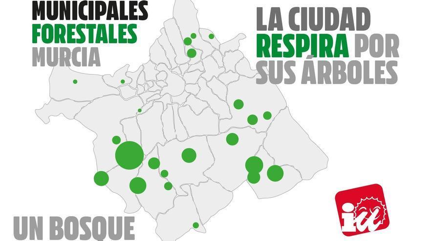 IU-Verdes asegura ya que se pueden plantar en Murcia un millón de árboles