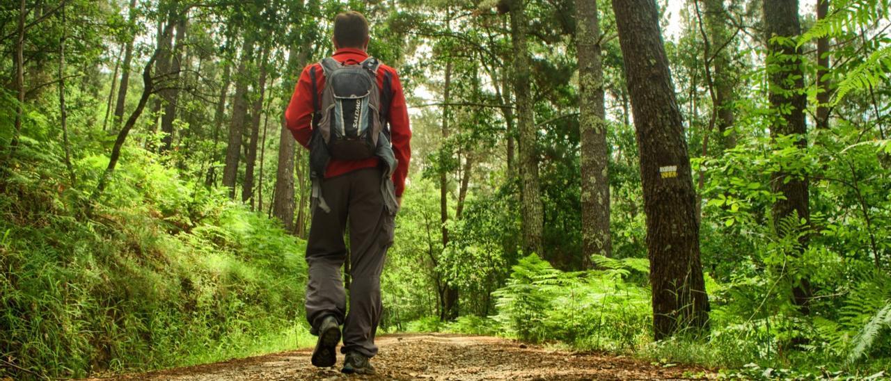 Un caminante realizando una ruta de senderismo en Galicia.