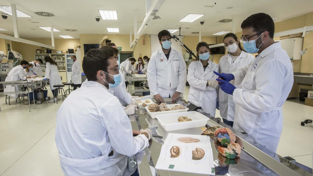 Alumnos de Medicina en prácticas de la facultad