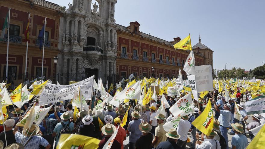 Asaja Córdoba se suma mañana a la protesta de agricultores de Sevilla