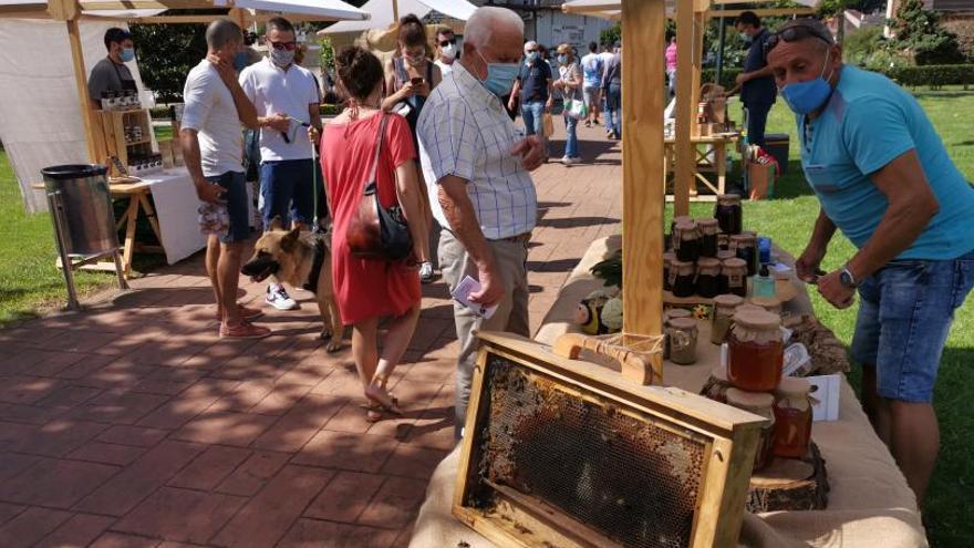 Los apicultores organizan hoy la III Feira do Mel en Moaña, con monólogo de Pepo Suevos