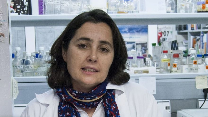 """""""Qué sabemos de los fermentos. La innovación en la industria quesera"""", con María Fernández, esta tarde en el Club Digital"""