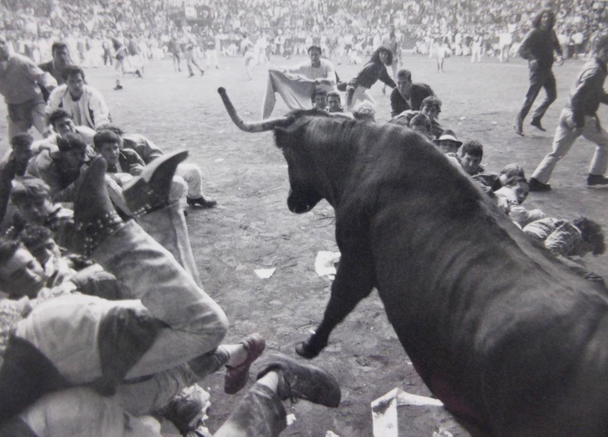 Los festejos taurinos