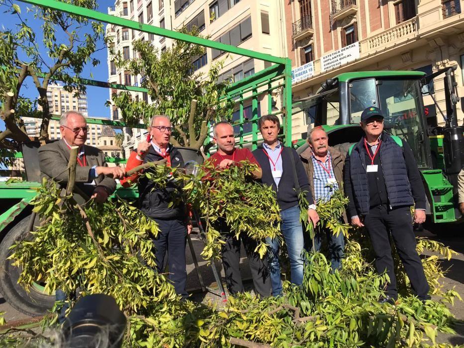 Inicio de la manifestación de agricultores de hoy en València