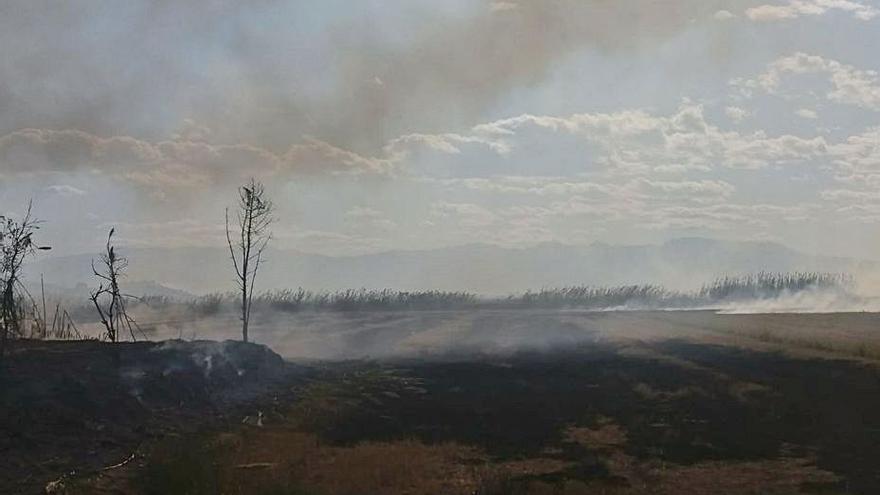 La Unió exige investigar quemas sin control de paja de arroz en Cullera