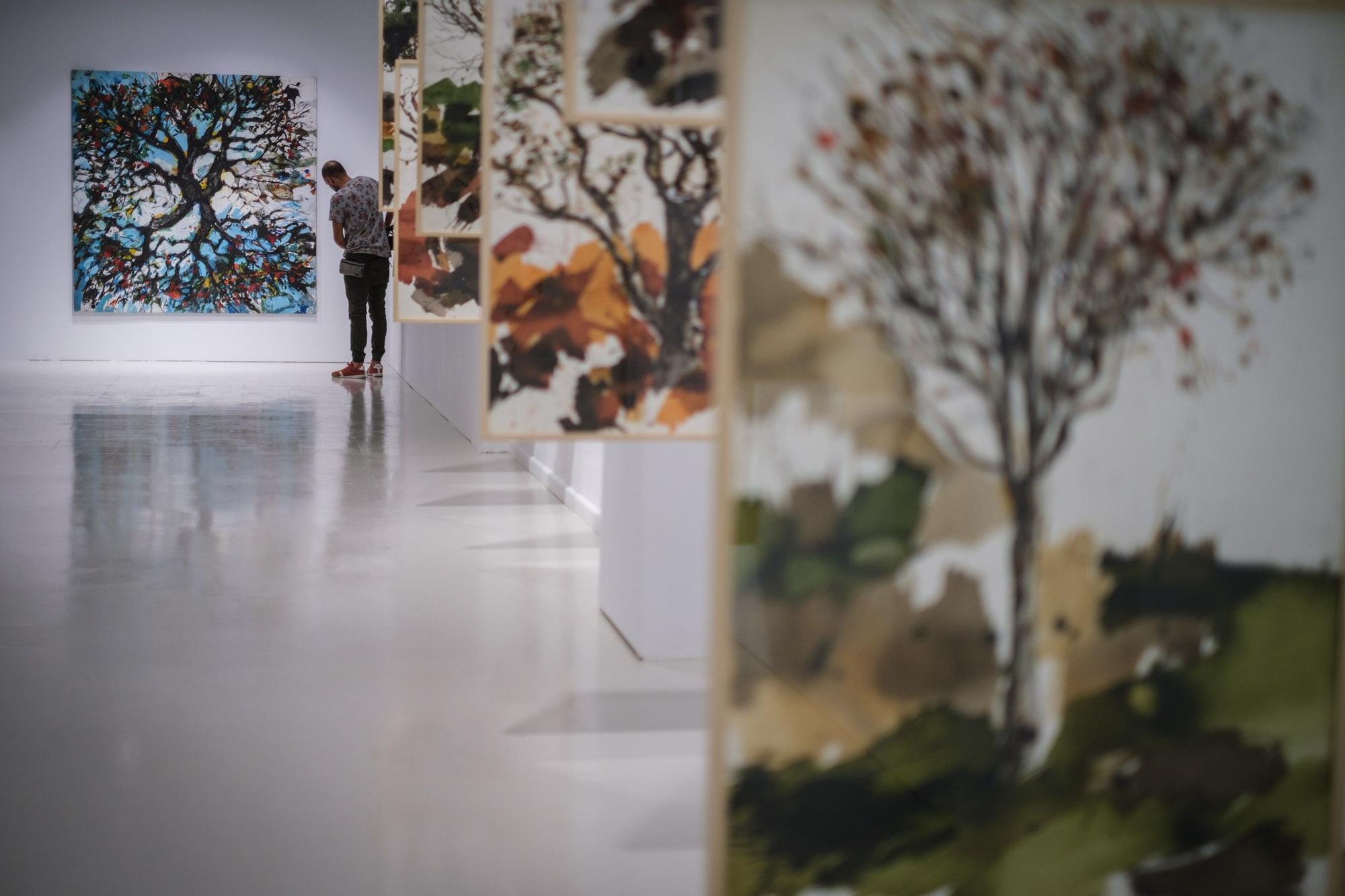 Exposición 'Vertical' de Juan Pedro Ayala