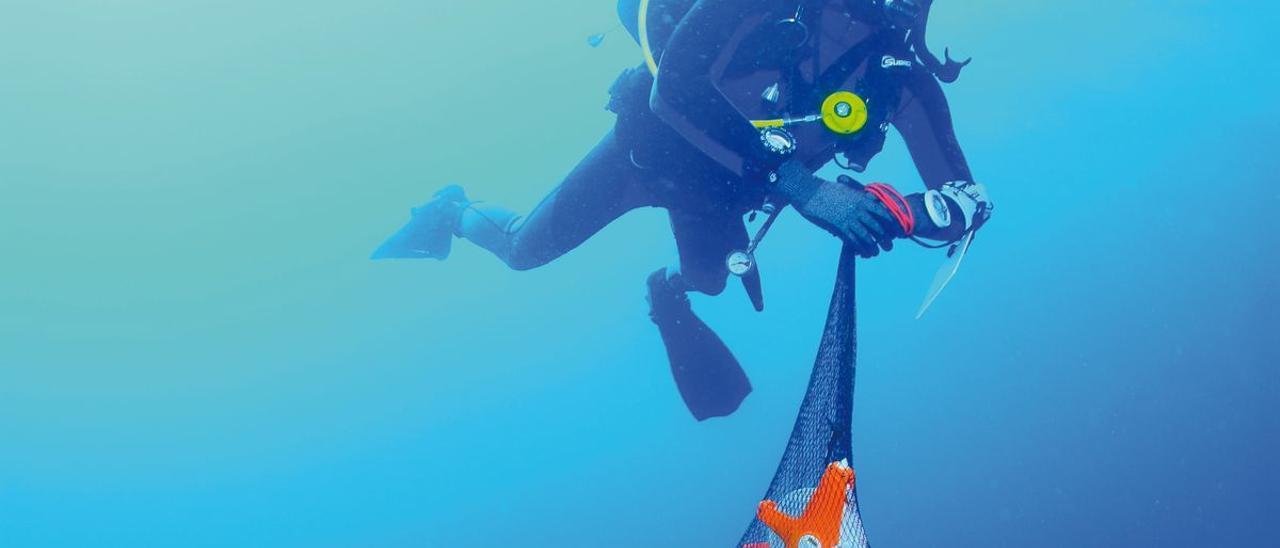 Arqueología subacuática en la bahía del Portitxo.