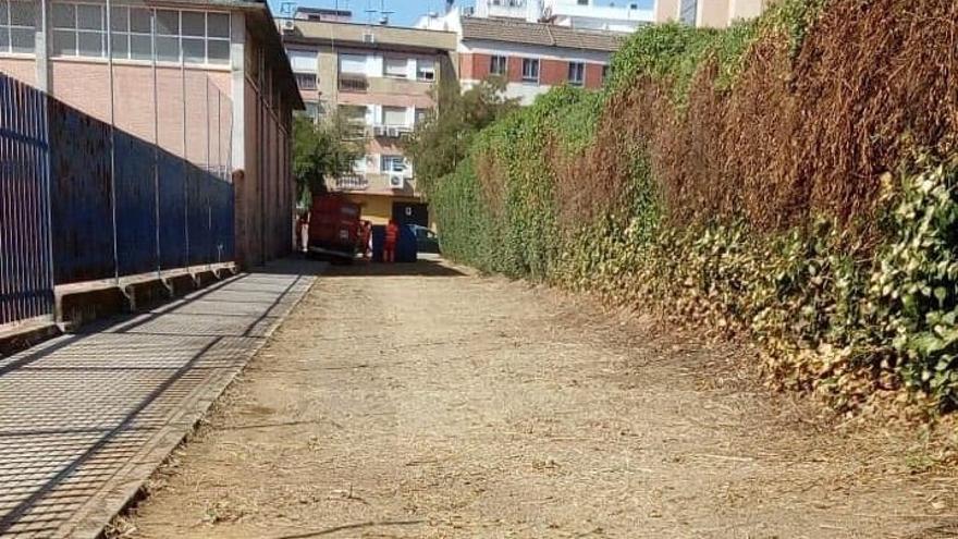 El Ayuntamiento habilita un pasaje natural para conectar el barrio de Fátima con el Parque de Levante