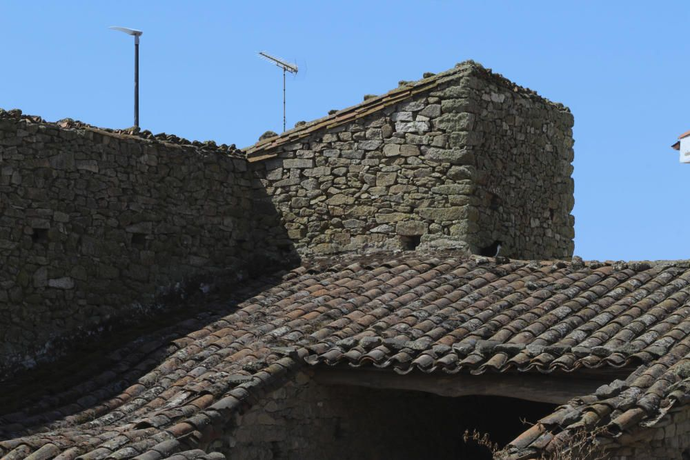 Zamora DesAparece|Bermillo