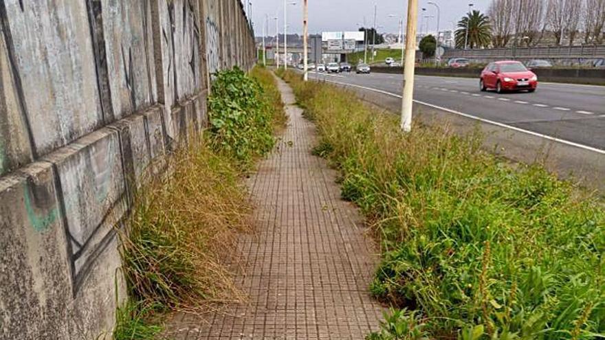 Carreteras atiende las reclamaciones de los vecinos de Palavea y limpia los márgenes de Alfonso Molina