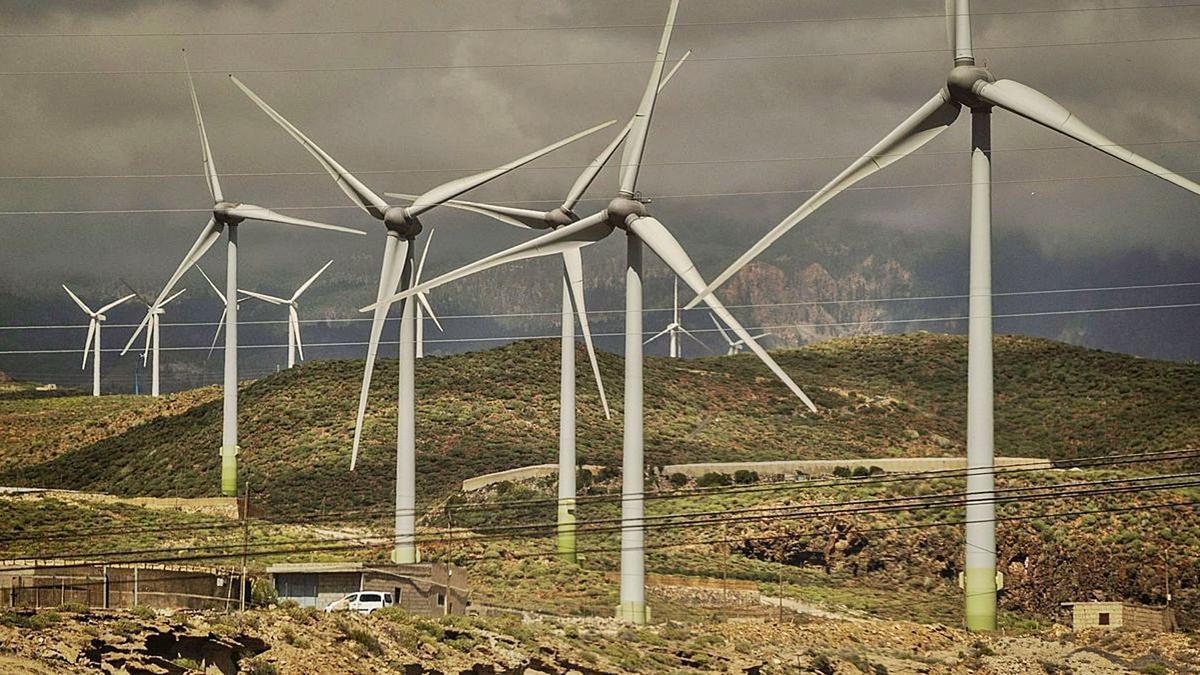 Parque eólico en Arico. | | E.D.