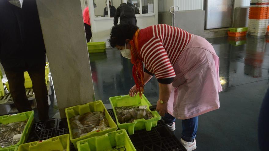 Las lonjas de las Rías Baixas, 107 millones de euros en siete meses
