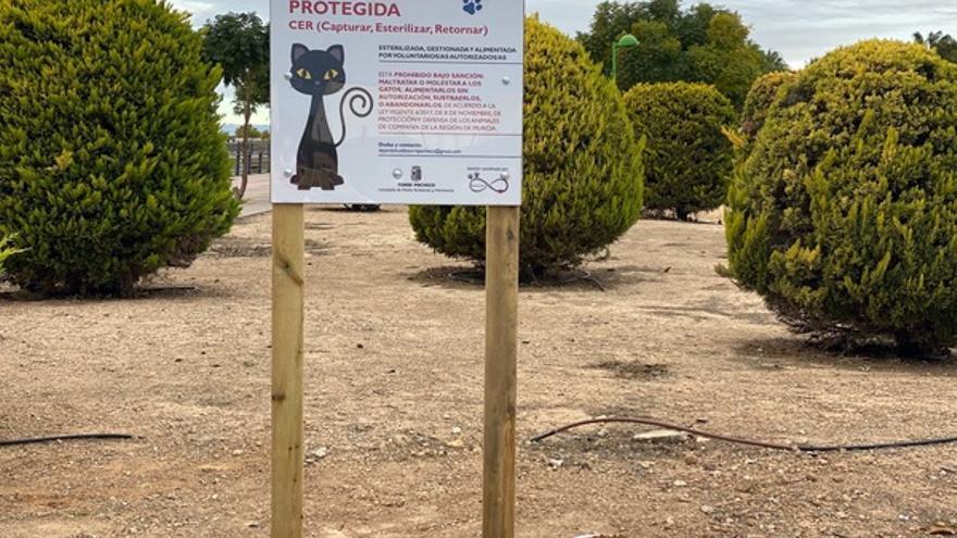 Denuncian envenenamientos en las colonias felinas de Torre Pacheco