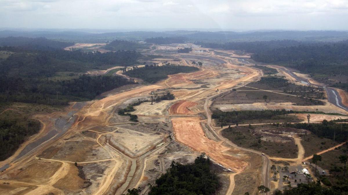 El 90 % del área destruida fue destinado a la agropecuaria.