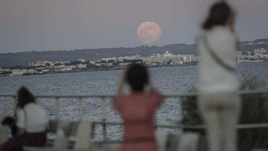 Llega el eclipse penumbral: la 'luna de fresa' invade los cielos de Mallorca