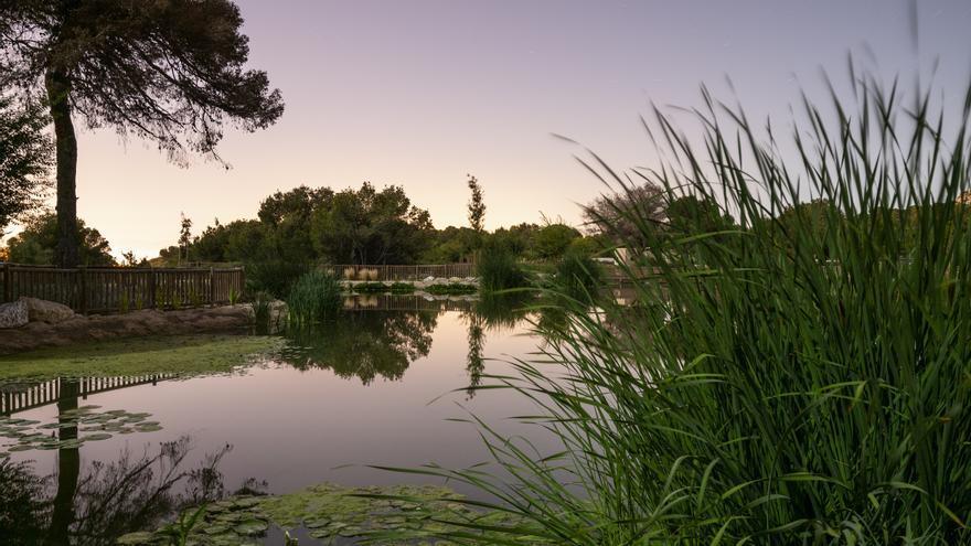 Las innovadoras instalaciones de Hidraqua para frenar el cambio climático en Alicante
