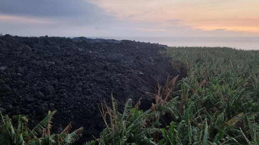 Un registro único y pionero para tramitar las ayudas a los afectados por el volcán de La Palma