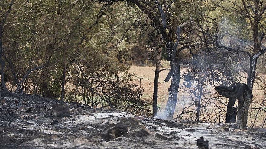 Les soques poden continuar cremant durant els propers dies