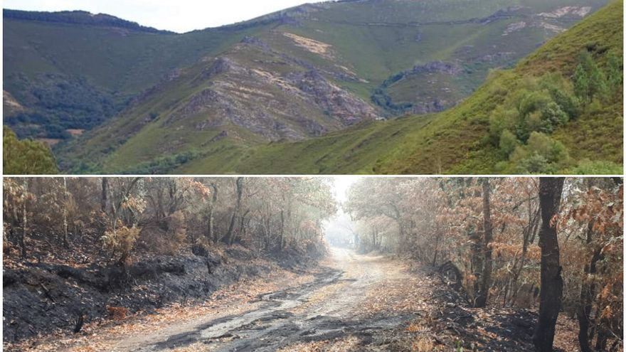 Serra de San Mamede, el antes y el después tras la vorágine del fuego
