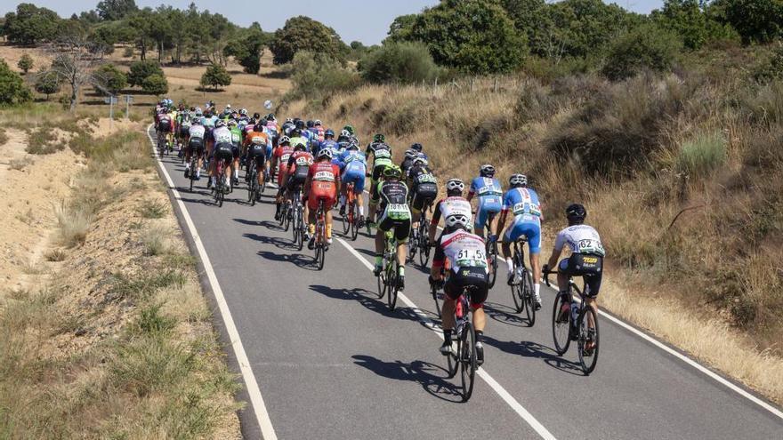 16 equipos confirman su presencia en la Vuelta Ciclista a Zamora