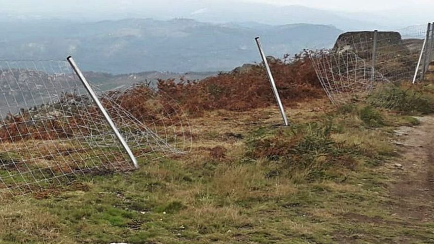 Coches y quads destruyen zonas reforestadas de monte en Padróns